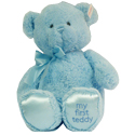 "Baby Boy Blue Teddy by ""Gund"""