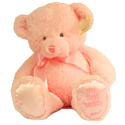 "Baby Girl Pink Teddy by ""Gund"""