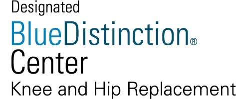 Blue_Distinction_2013 logo